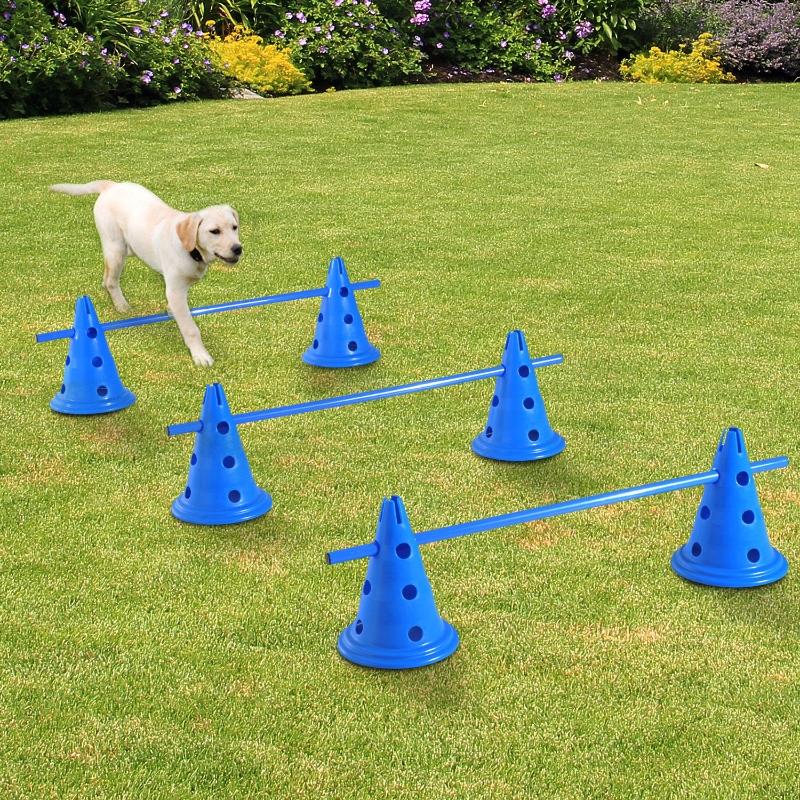 Pawhut Set of 3 Dog Agility Equipment Jumps Kit-Blue