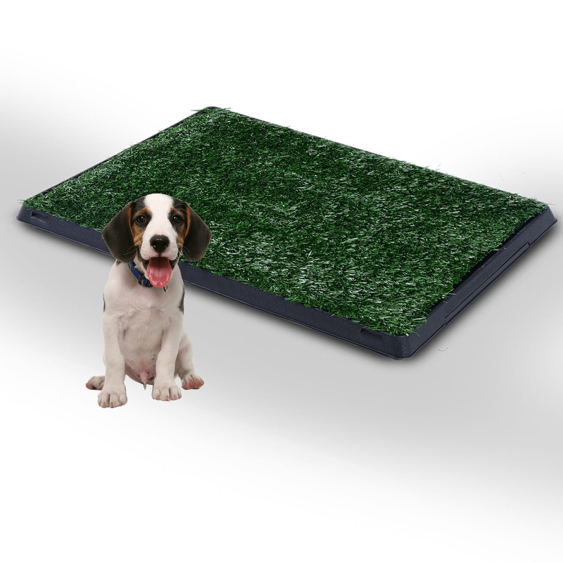 Pawhut Indoor Pet Toilet Training Mat W/Tray and Loo Pad