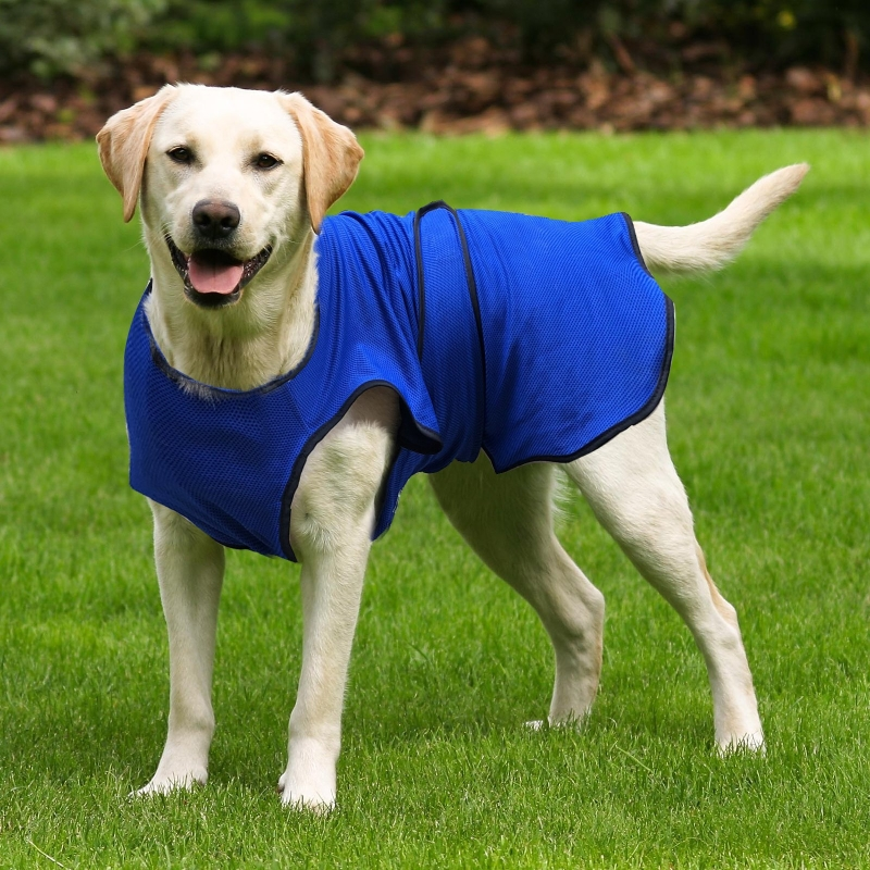 PawHut Dog Cooling Coat, Adjustable Size, Back Length 70 cm, Polyester-Blue