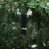 kunstkerstboom 1,8 m kerstboom dennenboom 1853 takken metalen voet PVC(m-9)