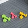Zestaw hantli z walizką przenośny komplet hantli 6 szt. stal czerwony + żółty + zielony(m-2)