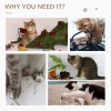 PawHut Cats 6-Tier Scratch Tree w/ Dangle Toy Beige(m-7)